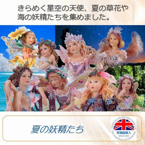夏の妖精たち